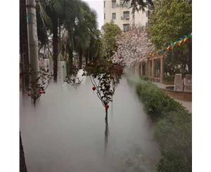 扬州人造雾系统安装