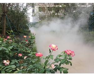 铜陵广场冷雾设备
